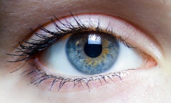 https://commons.wikimedia.org/wiki/File:Iris_-_left_eye_of_a_girl.jpg